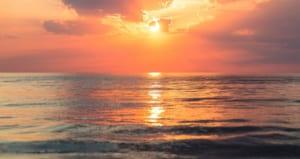 Urgent Specialists Sunset